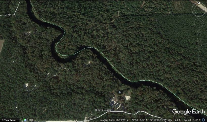ginnie-springs-landscape-close-up