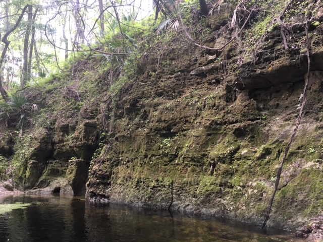 limestone cave3.JPG